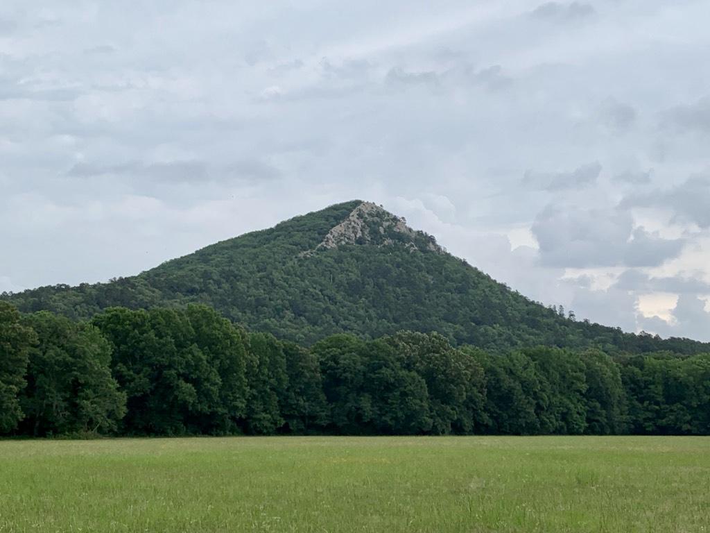 Pinnacle Mtn for Website.jpg