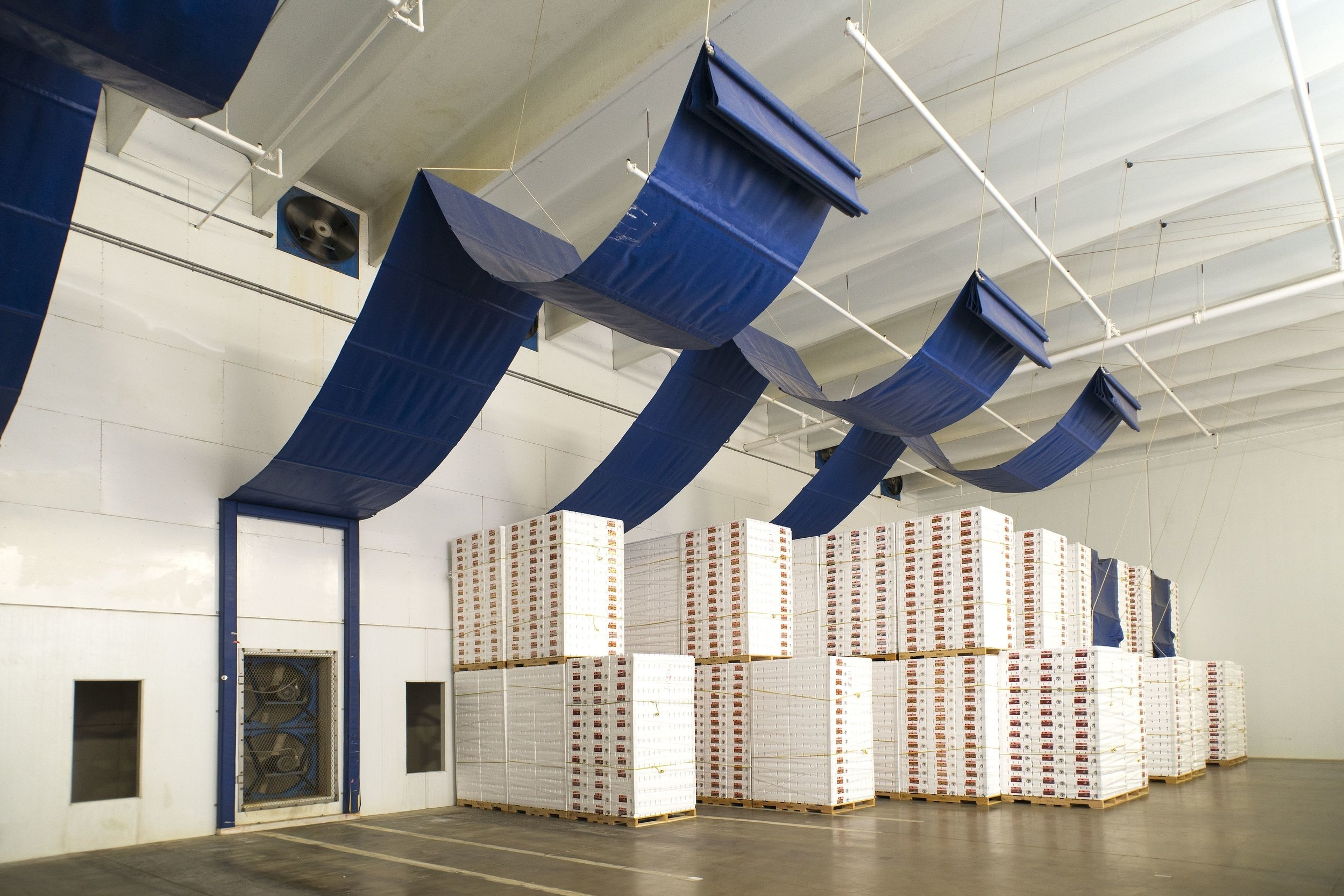 Table Grape Storage & Precoolers -