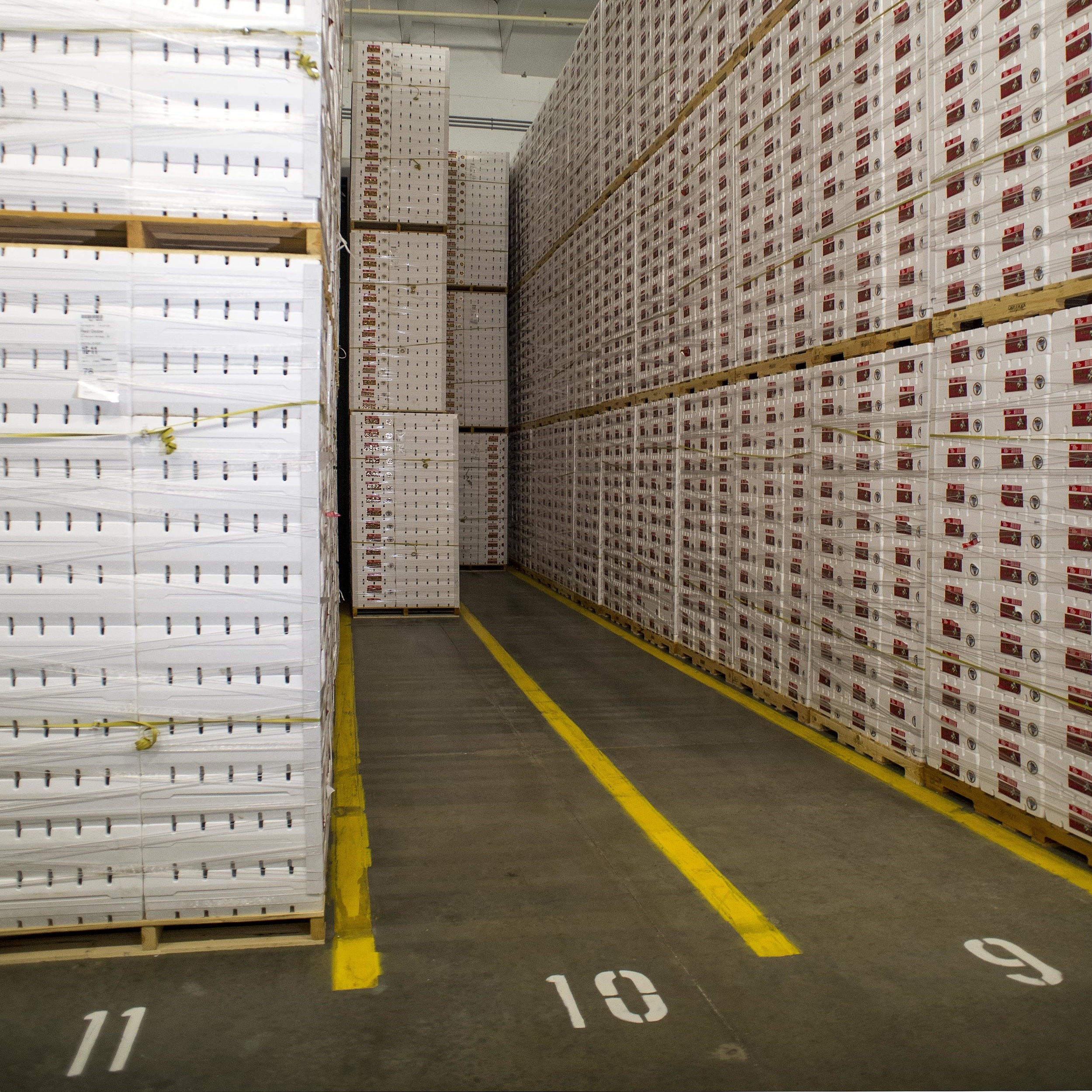Maximize - » Interior storage space due to long span qualities of engineered concrete» Resistance of your wall surfaces to forklift damage» Ability to maintain a gas tight environment for SO2 gassing» Food safety compliance» Humidity consistency within interior spaces