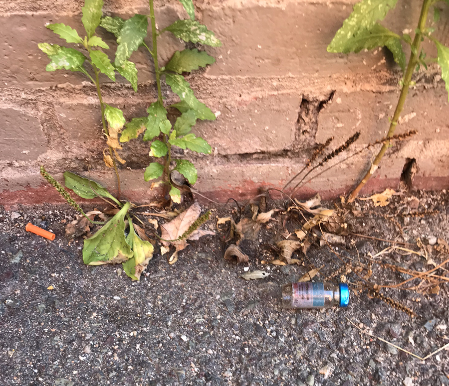 drug addicts are using cutillo park and leaving their needles behind on the ground