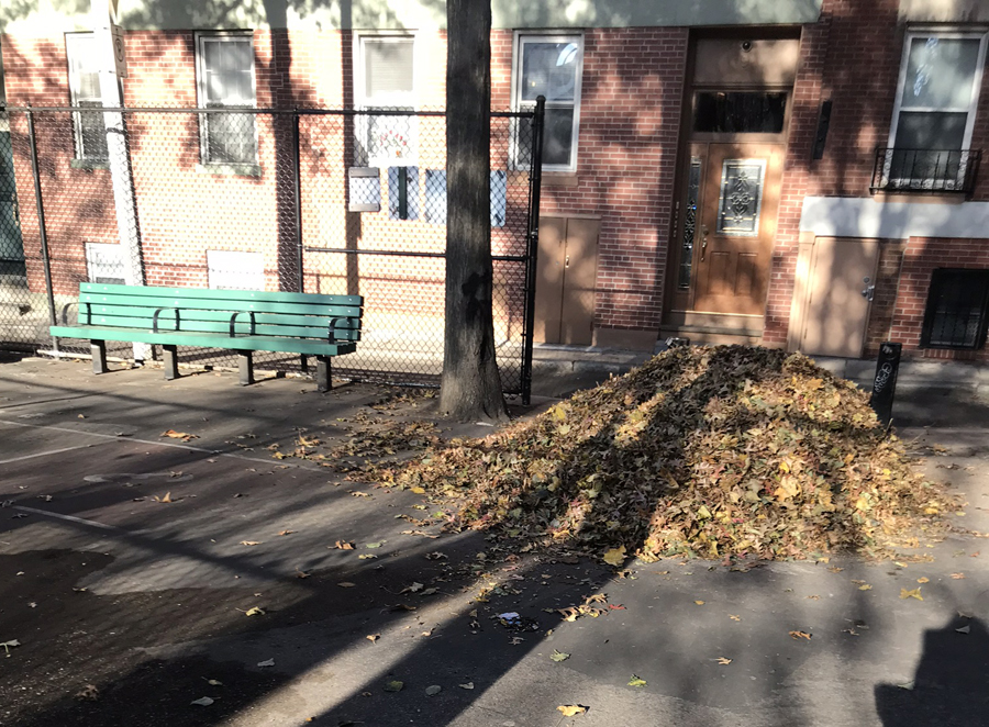 leaves in fall are not being cleaned up, this photo shows a big pile blown by wind into a doorway