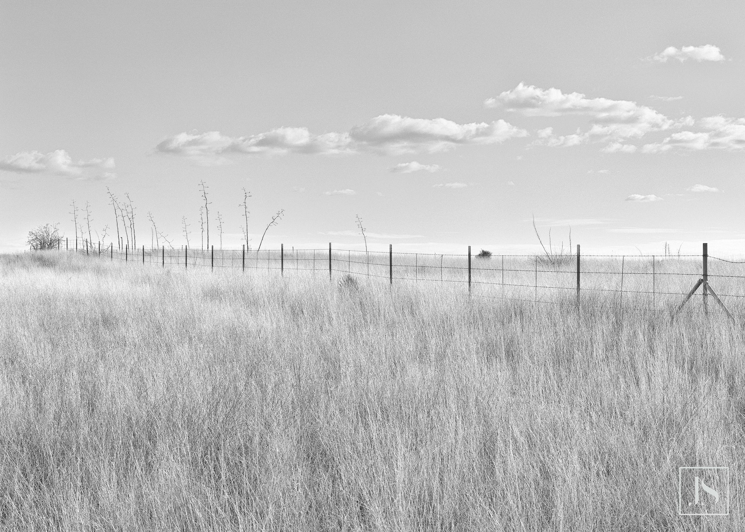 Fence Line-Sonoita, AZ 2000