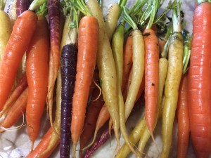 raw carrots IMG_5180