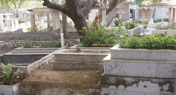 Rehan Ansari,  PECHS (Society) Cemetery , 2011. [Image Description: A photo of a cemetery with white marble planters in which small plants and rose bushes grow. There are trees scattered throughout and several structures made of four columns and small, flat roofs.]
