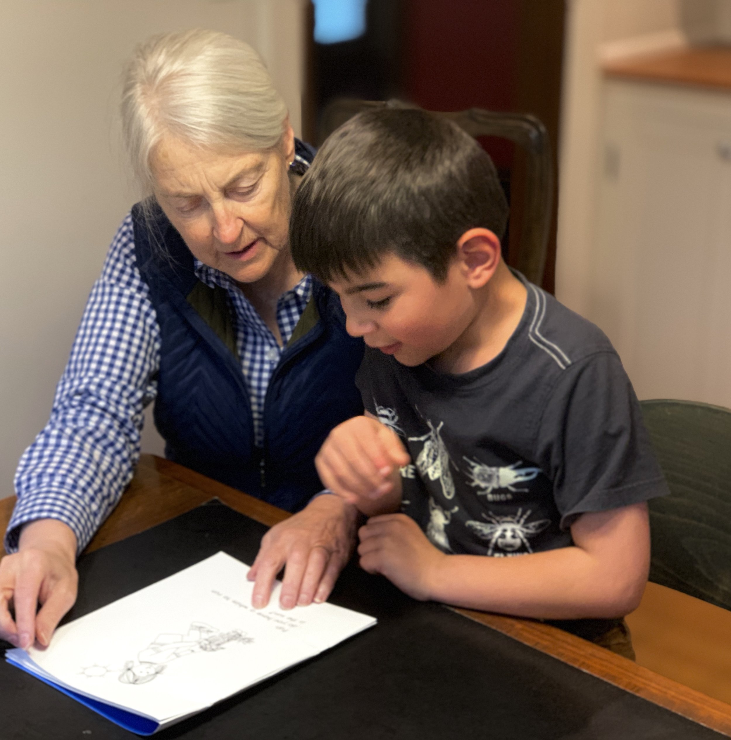 Language Skills Therapy - Language Skills Therapy is a group of approximately twenty-five educational therapists who are individually matched to their students. Our office is in Beaverton, but our therapists work throughout the greater Portland area. We work with our students during mutually agreed upon times including before school, during the school day and after school. Therapy usually extends through part of the summer.