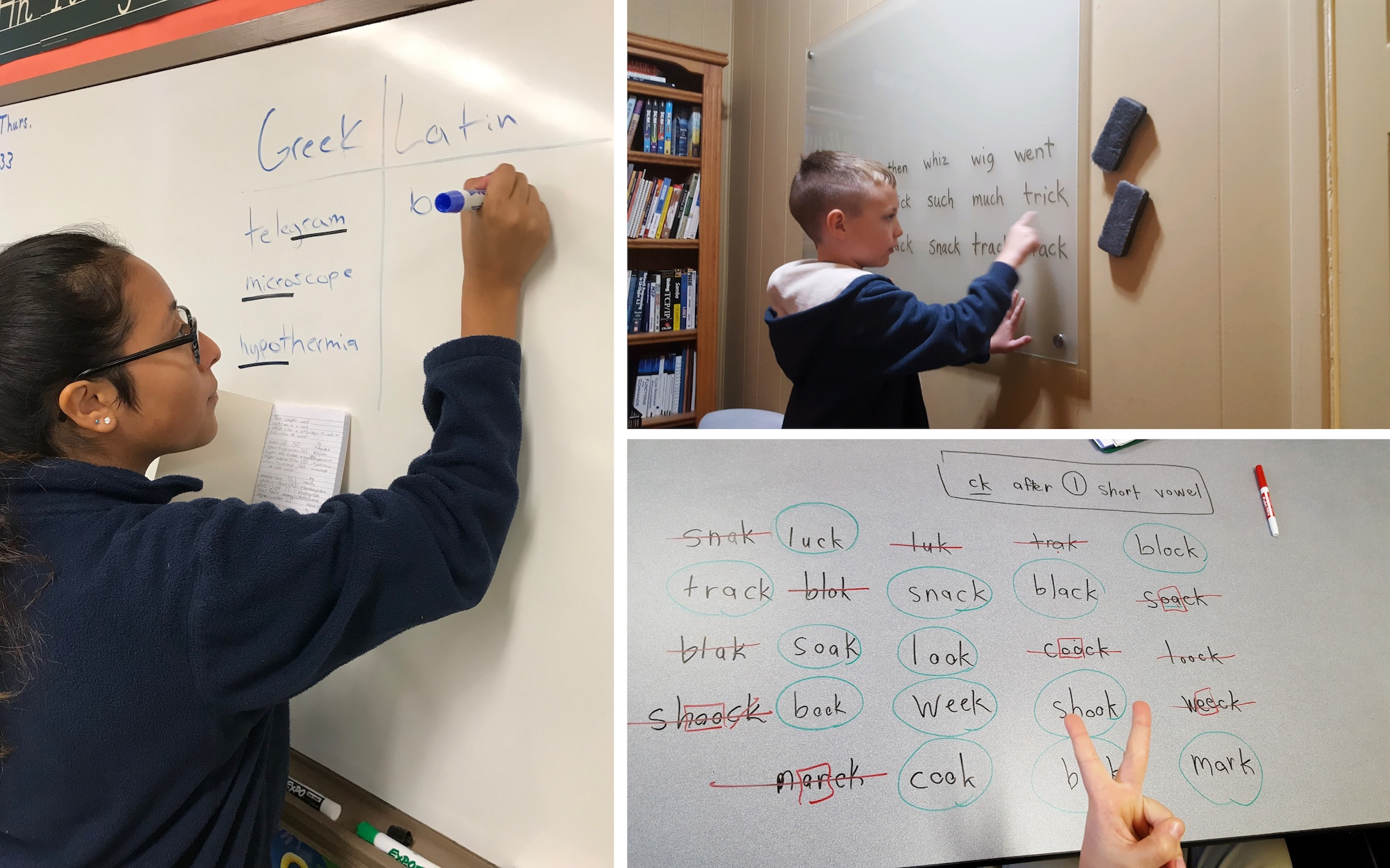 language-skills-therapy-students.jpg