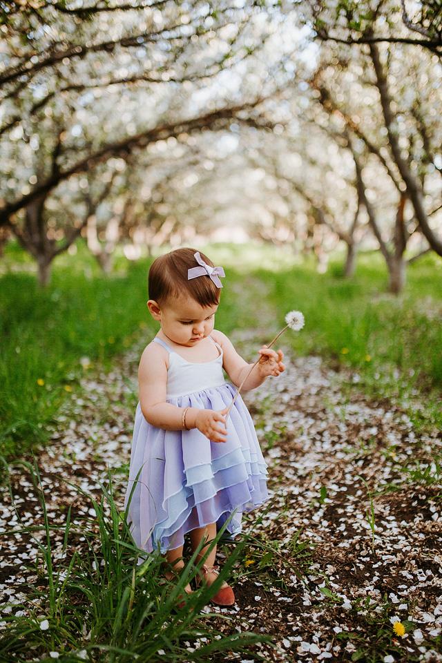 Spring Blossom Sessions: ShaiLynn photo + Film07.jpg