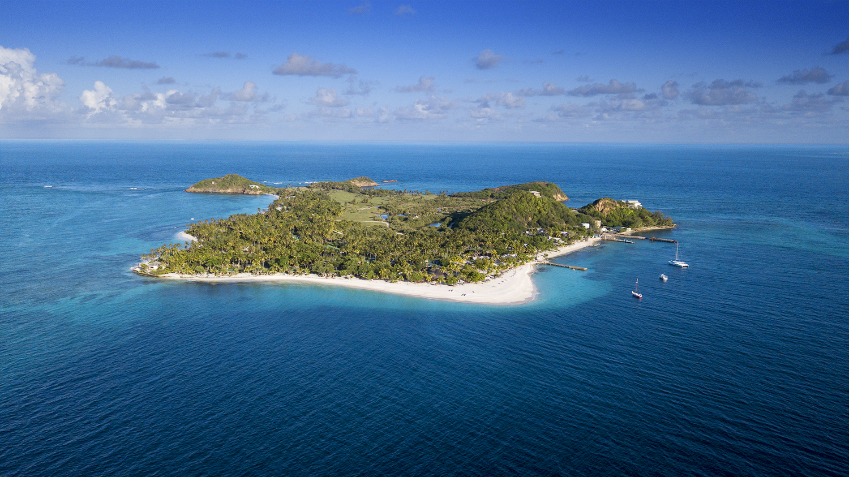 palm island 3.jpg