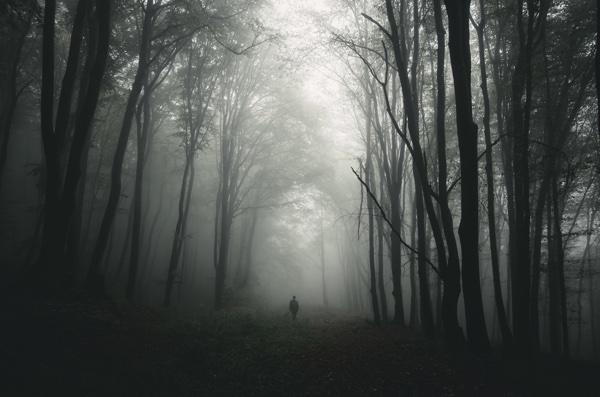 man_walking_in_dark_forest.jpg