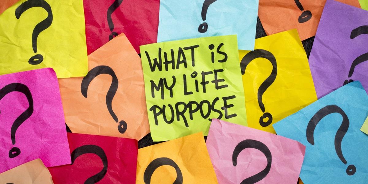 life purpose wide.jpg