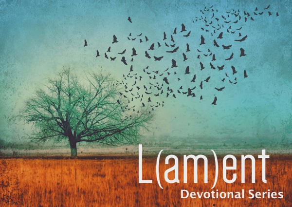 field_and_tree_lent_devotional.jpg