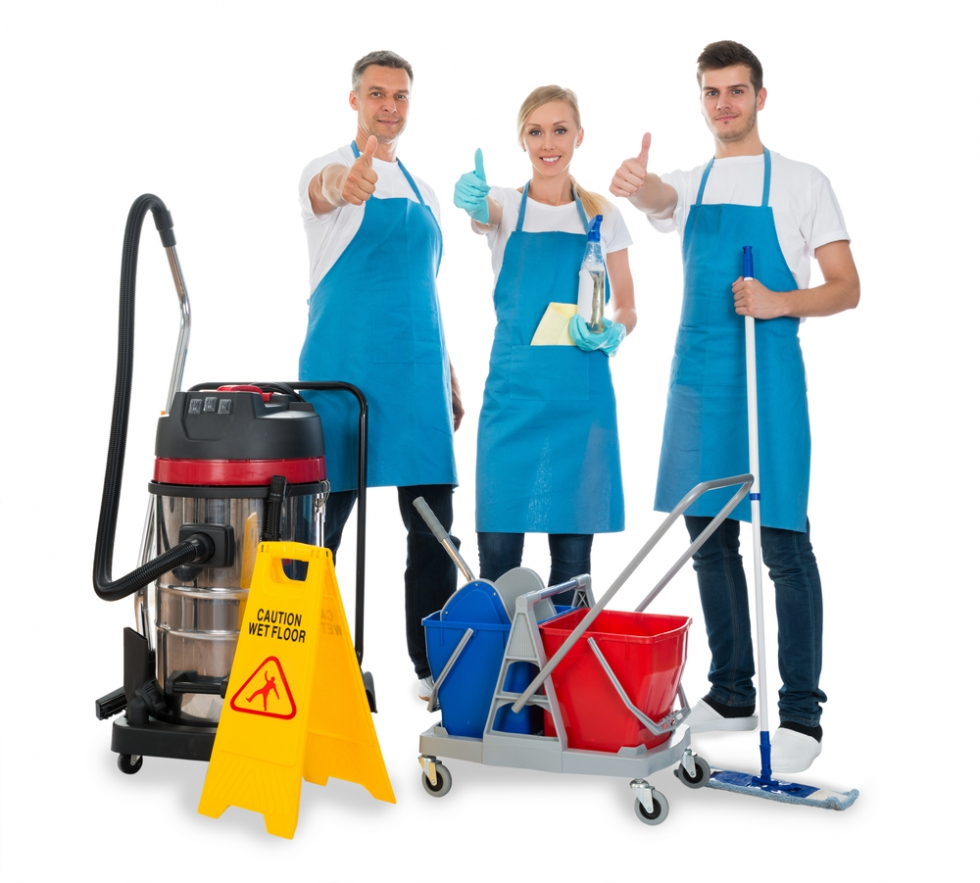 Professional House Cleaners.jpg
