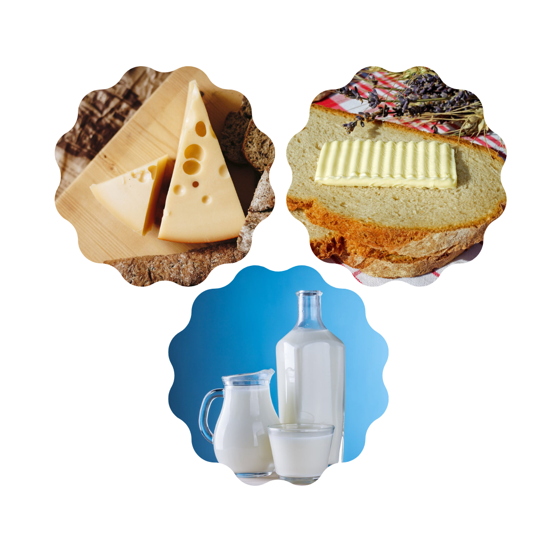 Storing Dairy Products.png