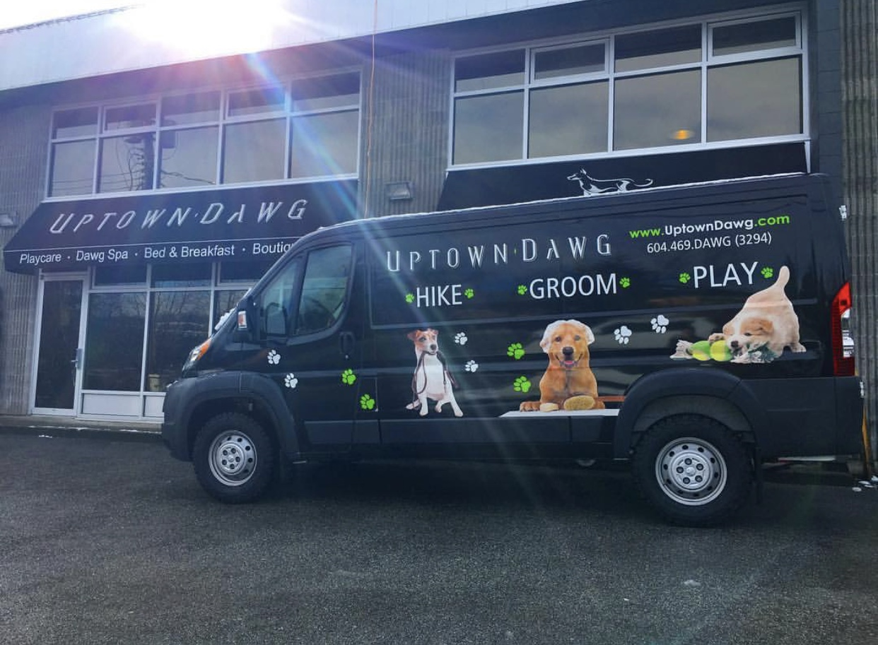 The Uptown Dawg van is fully equipped with A/C and heat to safely and comfortably transport your dog between our facility and wherever our destination might be!