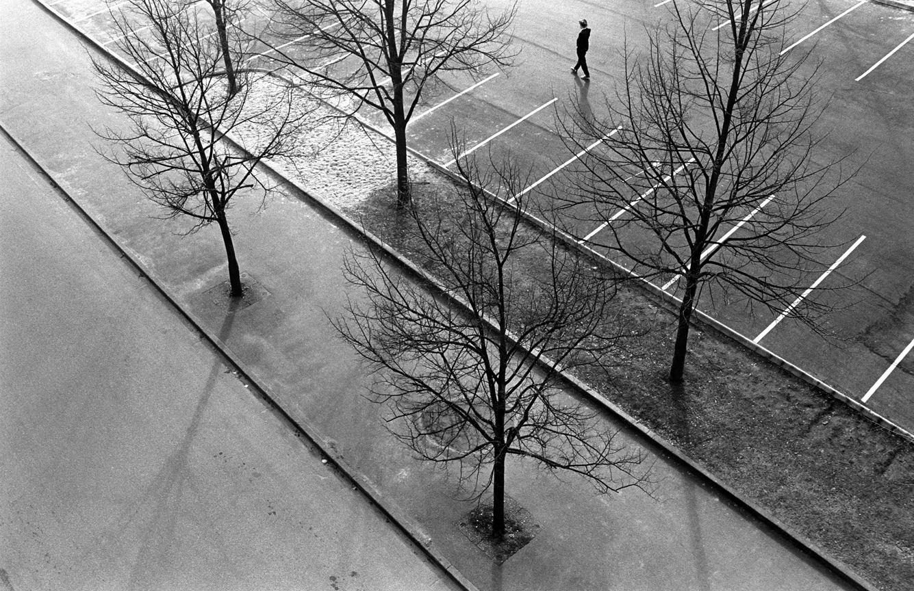 074_Tim_Barber_Untitled_dan_trees_low.jpg