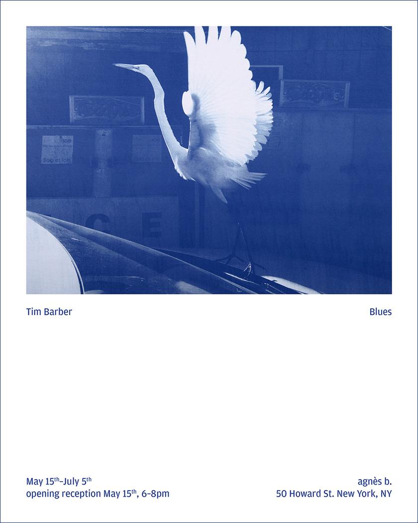 timbarber_blues-original.jpg