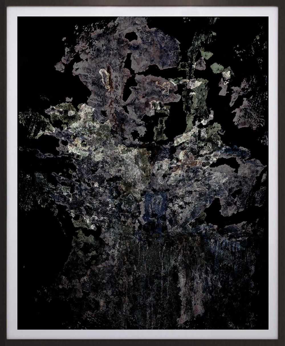 Elias Wessel  Feral 8 , 2015-16 Color Photograph Original: 231 x 189,2 cm (framed)