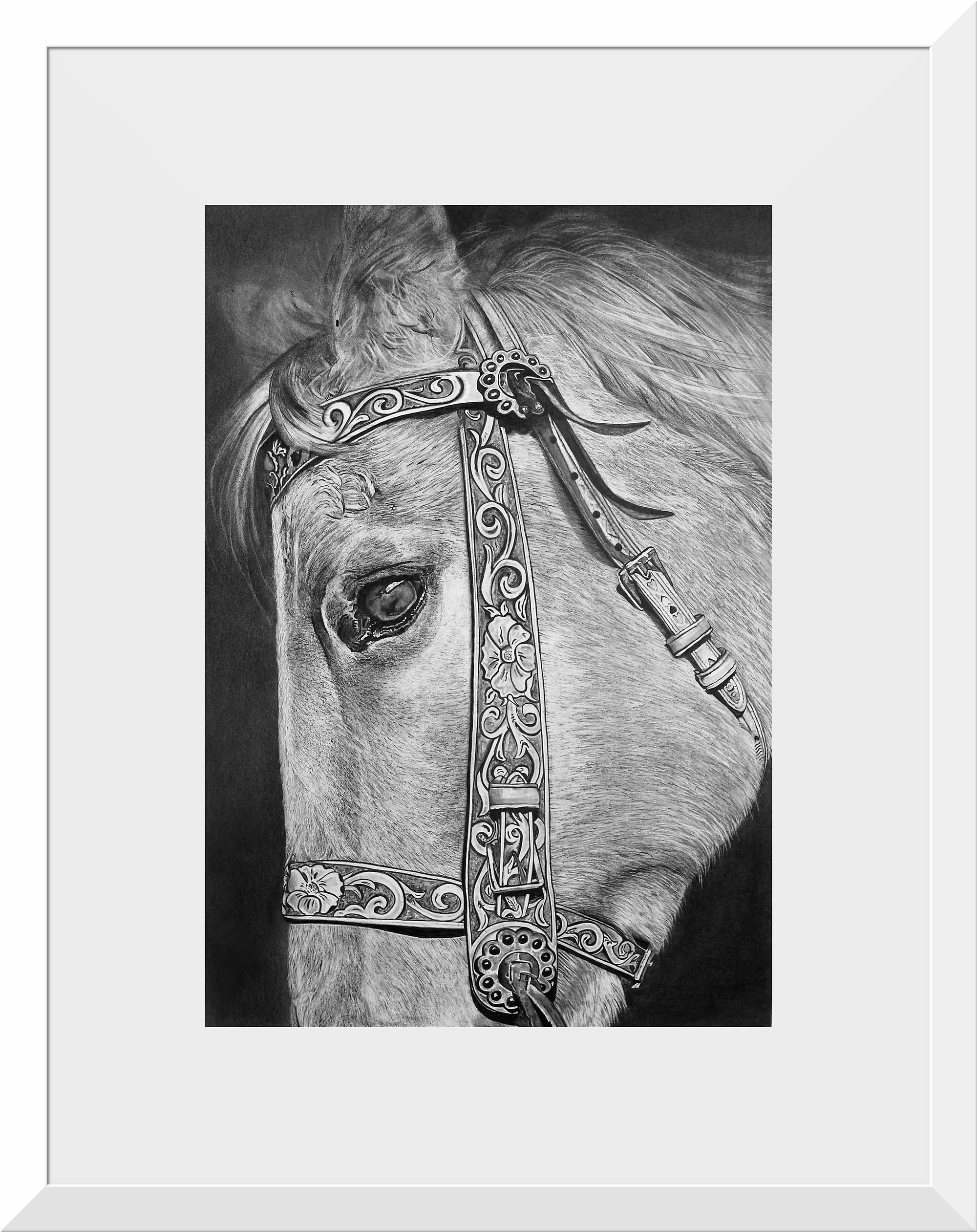 - 'Beautiful Horse'A2 size paper. A1 size frameGraphite on paper, framed & ready to hang.Also available as a print$795ENQUIRE