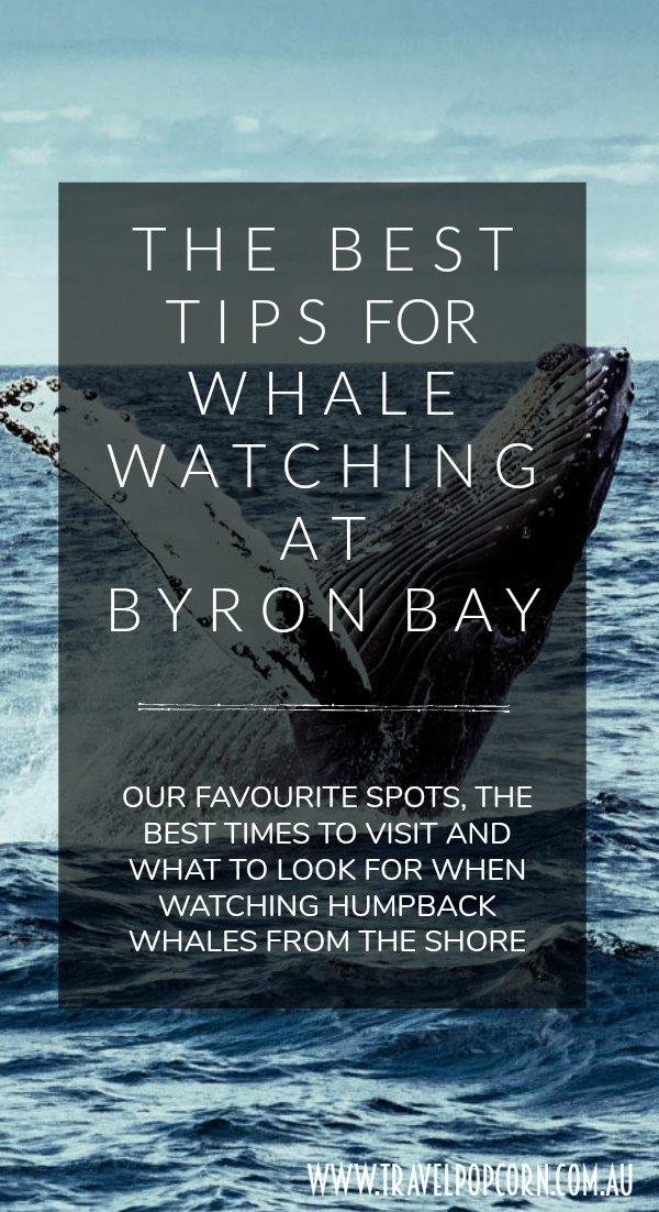 byronwhalewatching3.jpg