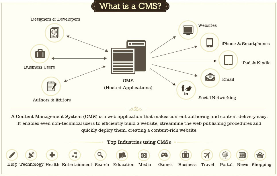 WEBSITES / CMS