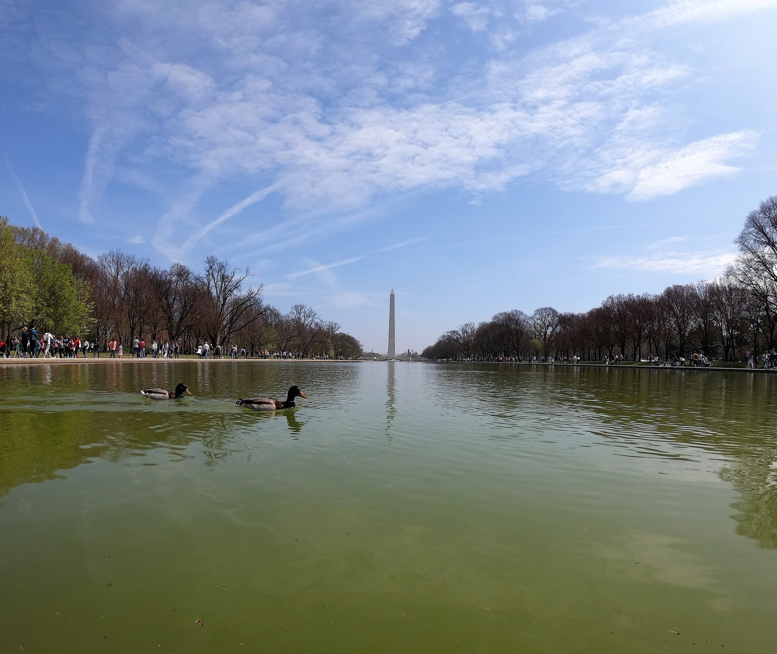 Washington Monument from Lincoln Memorial side of Reflecting Pool