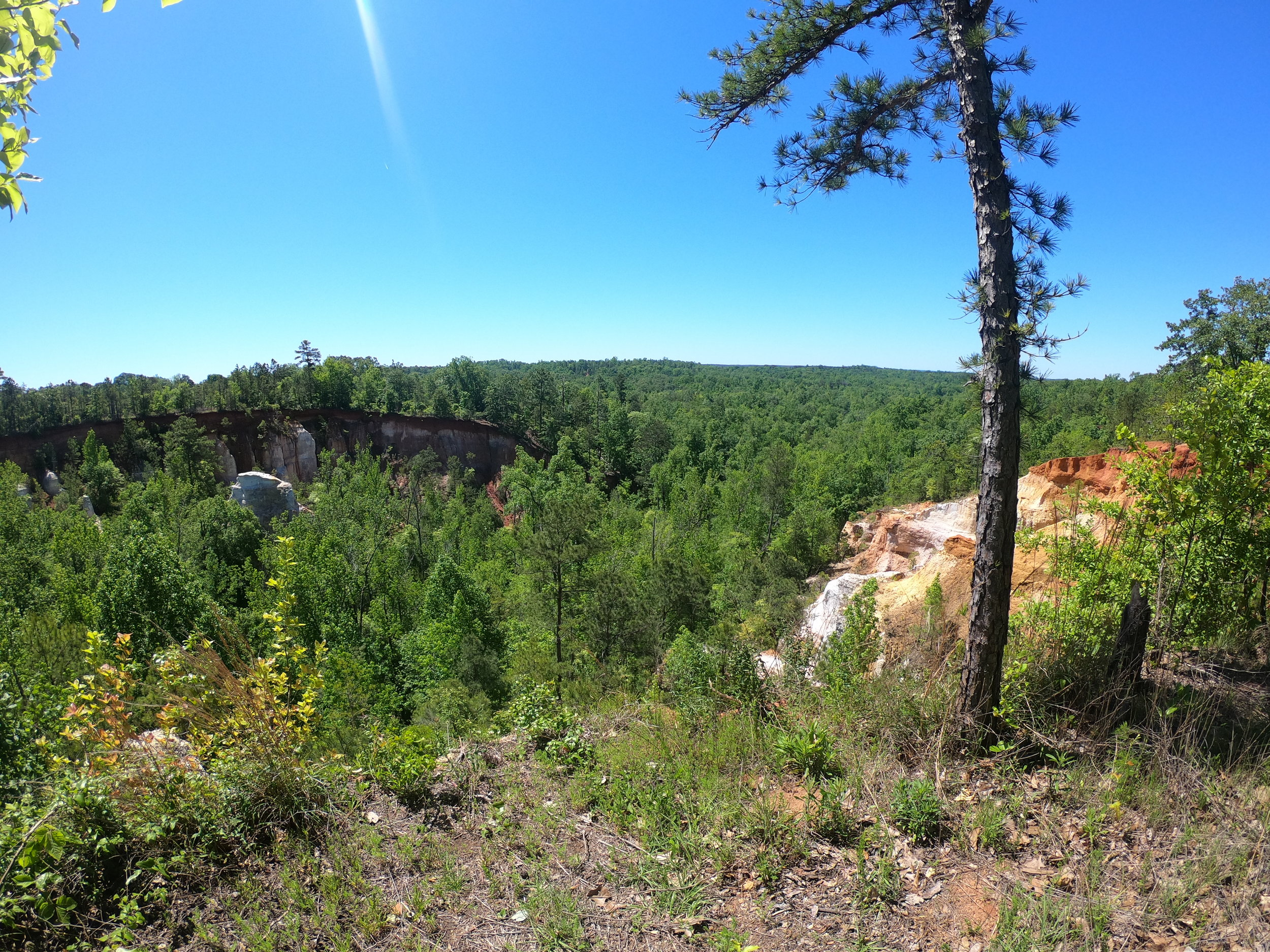 Providence Canyon State Park in Stewart County, Georgia