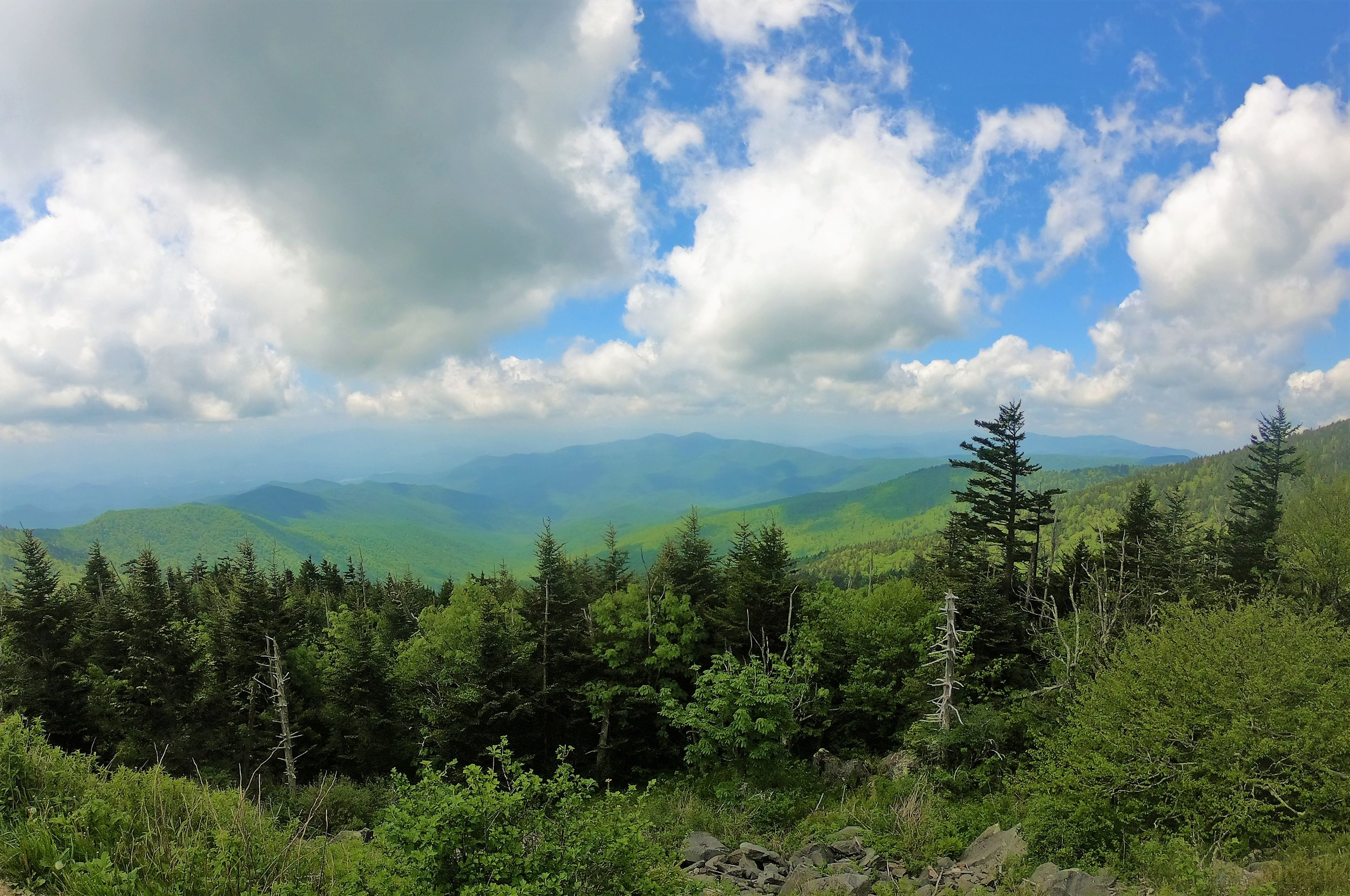 Clingman's Dome at Smokey Mountains, Tennessee