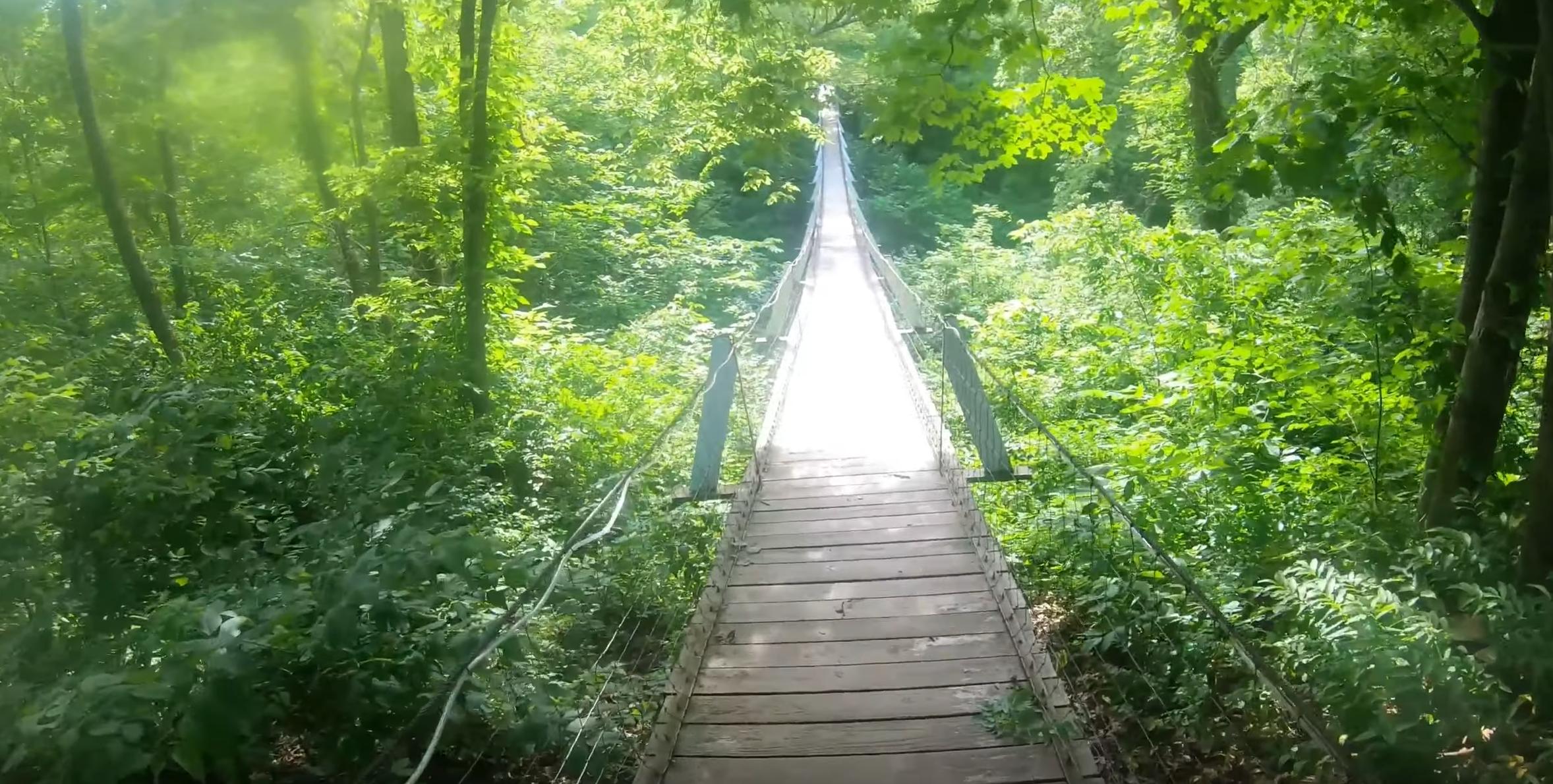 Lover's Leap Swinging Bridge in Iowa