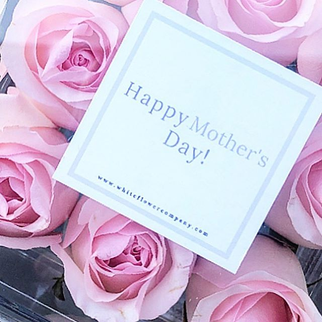 we are starting our deliveries for Mother's Day weekend tomorrow! If you haven't already grabbed a box of our gorgeous roses for the mothers in your life, click the link in our bio! $10 OFF Mother's Day Boxes and FREE delivery to any Nashville address! Happy Mother's Day from White Flower Company!