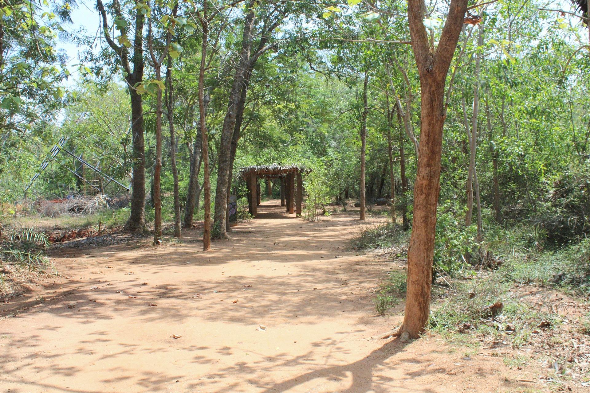 Auroville, Puducherry (2).JPG