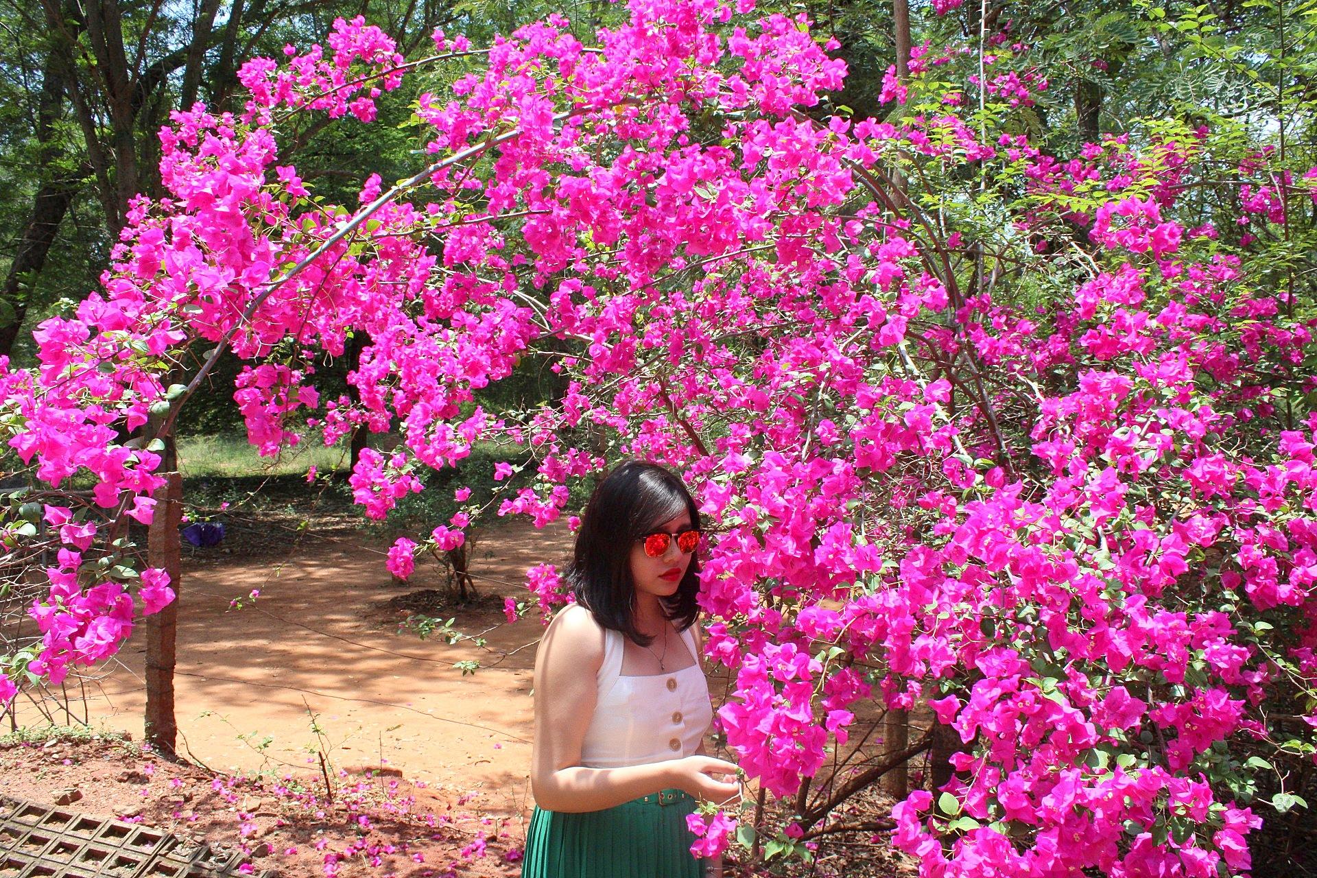 Auroville, Puducherry.JPG