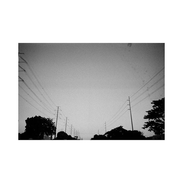 illusory #35mm #ilford #ilfordphoto