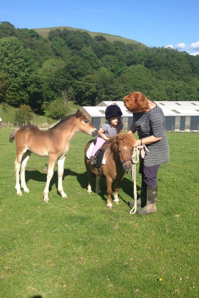 Young Poppy Launder enjoying a riding lesson on Katie with Liz whilst Maeve encourages her rising trot.