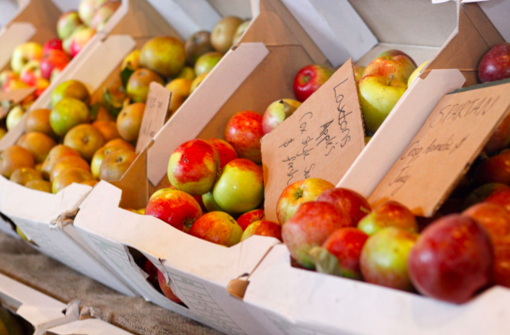 Beautiful Kentish apples in all varieties