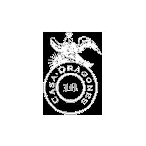 logo-casadragones-white.png