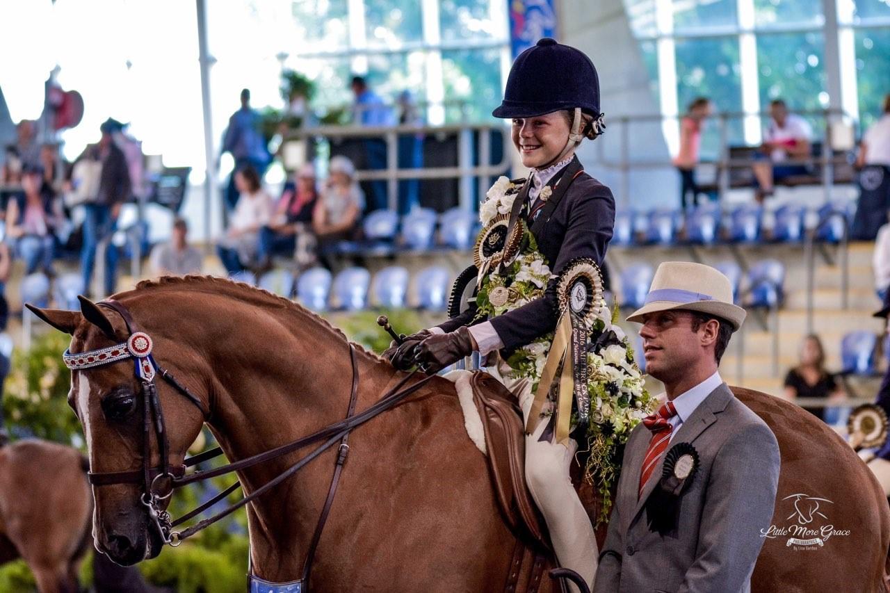 SHOW HORSE COUNCIL GRAND NATIONALS 2016