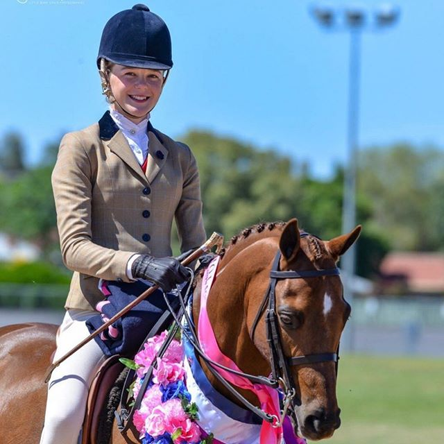 Who's out and about competing this weekend and where? Send in your photos to be featured! Photo Gracie Goodyer, ESH Magazines current rider of the month. Photo credit to Lisa Gordon. Visit Everything Show Horse today. 🥇🐴🥇🐴🥇🐴 #showhorse #showing #showhunter #everythingshowhorse #equestrian #horse #equestrian