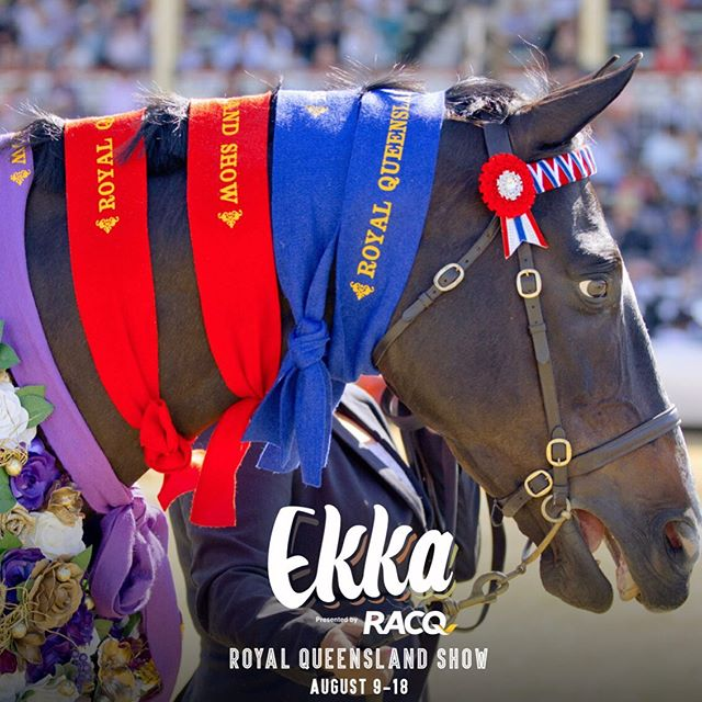 Everything Show Horse is excited to announce that this year we will be collaborating with the 2019 EKKA Royal Queensland Show to being you daily showing results.  Visit our website throughout the duration of the show and keep up to date with all the winners and grinners for 2019🦄🦄🦄 #showhorse #everythingshowhorse #EKKA #RACQ