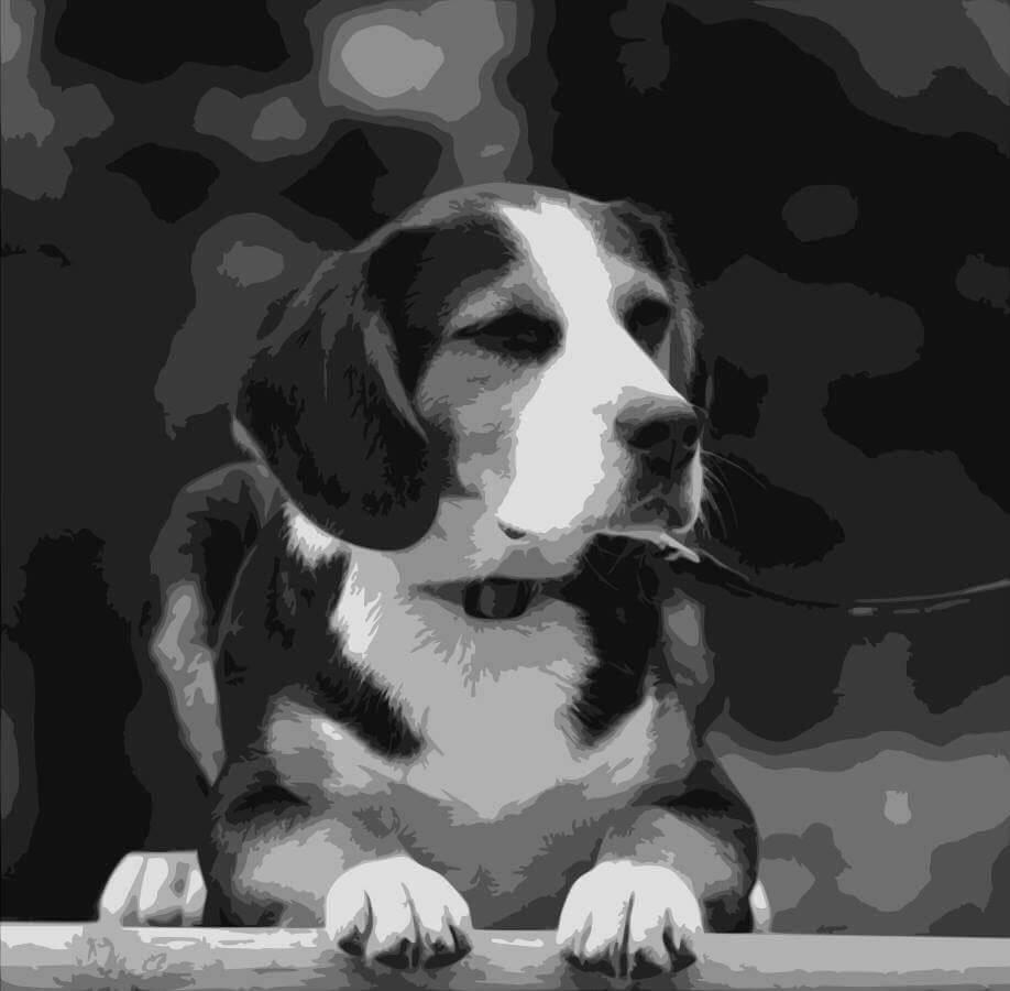 angelabramhamart-beagle-portrait-papercut-template.jpg