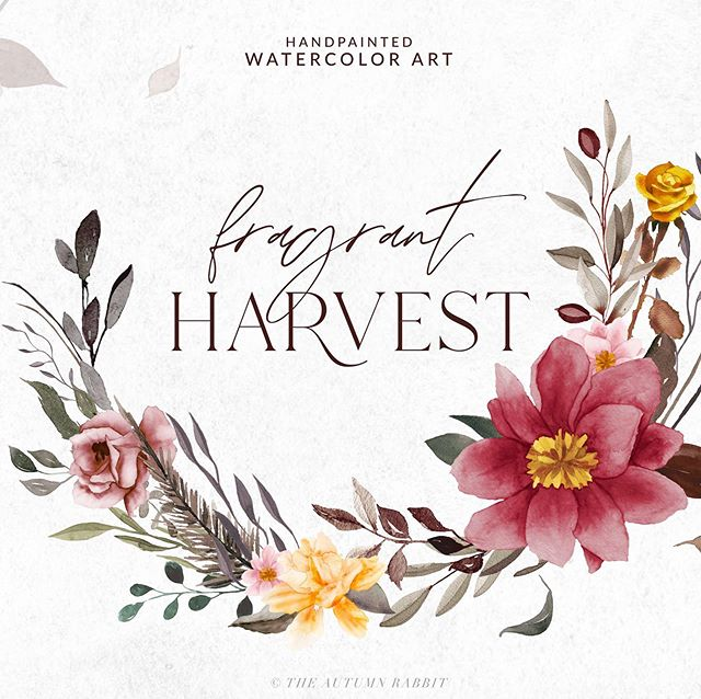 I love the change of seasons and fall is my favorite! Introducing my latest clipart set - Fragrant Harvest. I hope you like it as much as I do.  These graphics have all been hand painted and then digitized. Check it out on @creativemarket - https://crmrkt.com/pOwjgA . . . . #clipart #watercolorclipart#watercolorflowers #leaves #watercolorleaves #floralclipart #graphics #handpainted #designerresources #graphicdesign #weddingclipart #art #leaf #watercolor  #rose
