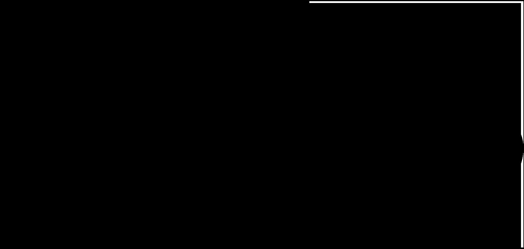 Text logo NC.png