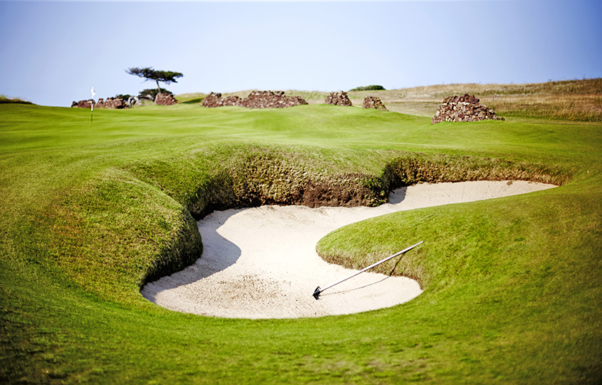 The 8th green is one of The Renaissance Club's highlights.