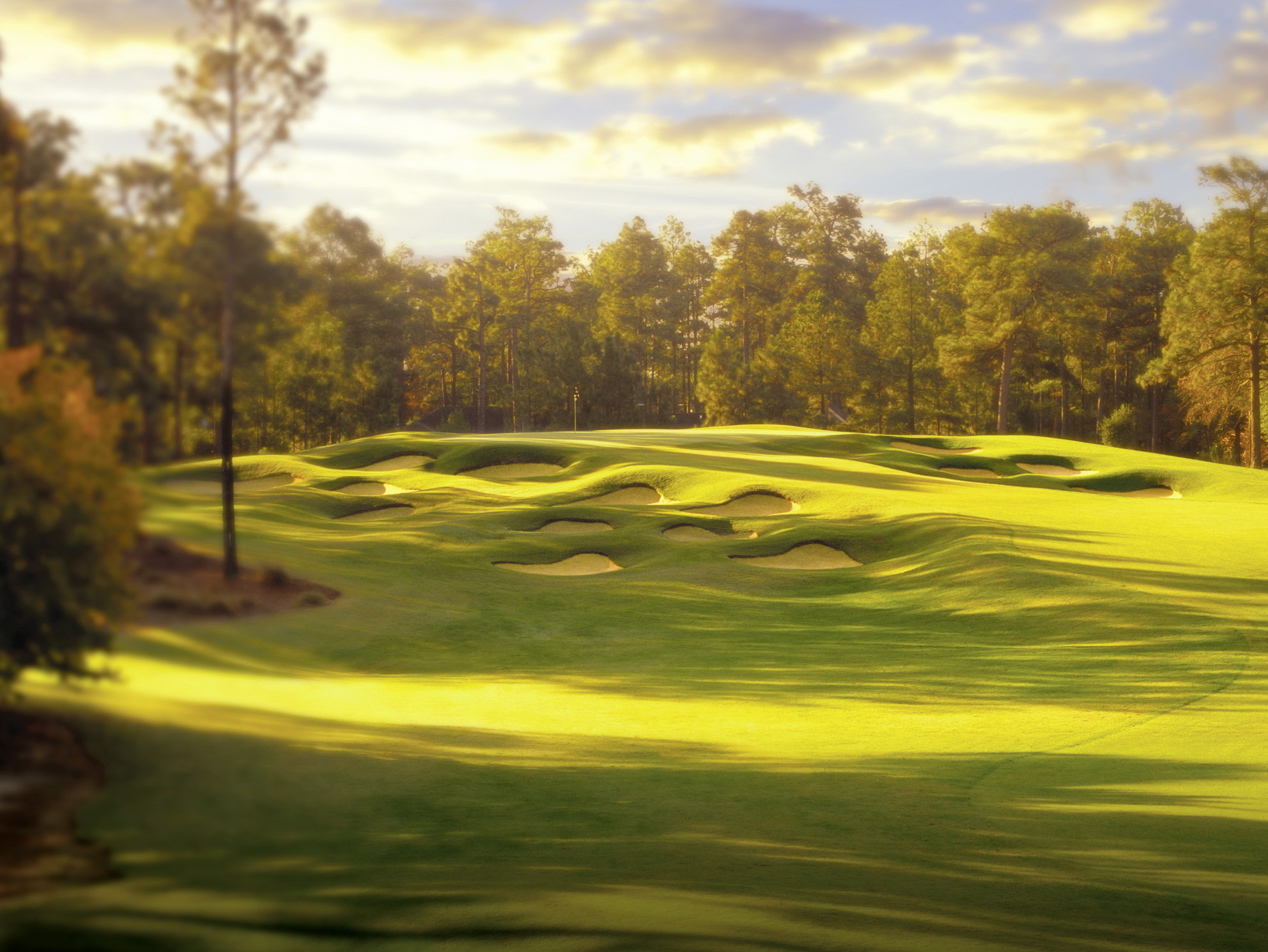 Tom Fazio remodelled Pinehurst's No.4 course, which was previously a combination of many different designers' work.