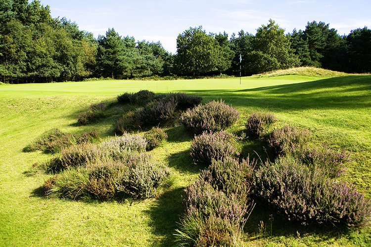 40_Top_100_Golf_Courses_England_Beau_Desert.jpg