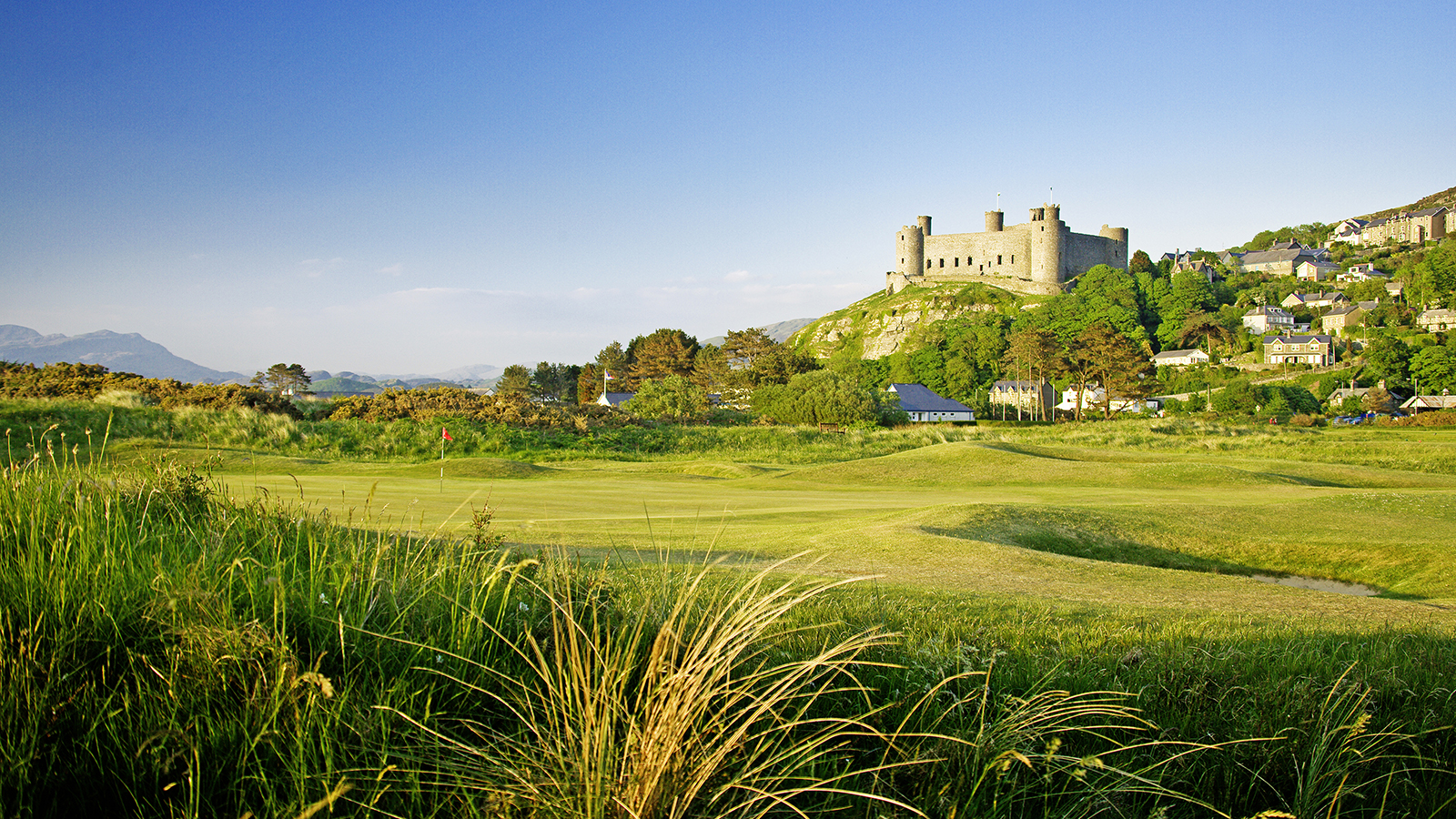 Royal St Davids 1.jpg