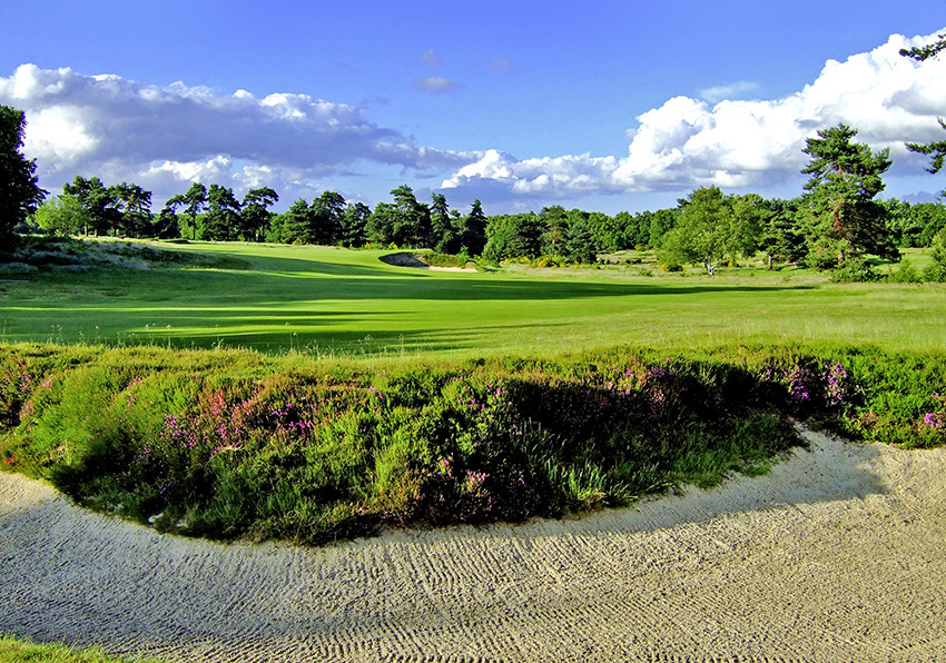 7_Top_100_Golf_Courses_England_Walton_Heath.jpeg