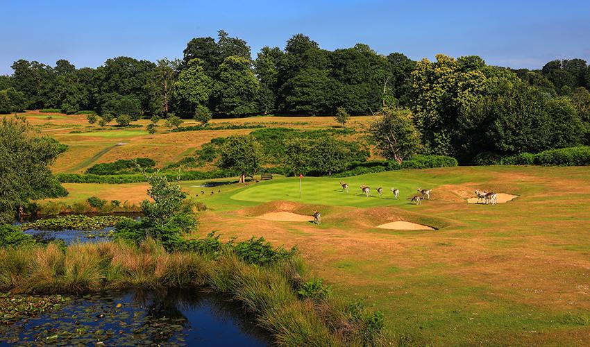 Best_Golf_Courses_In_Kent_Knole_Park.jpeg