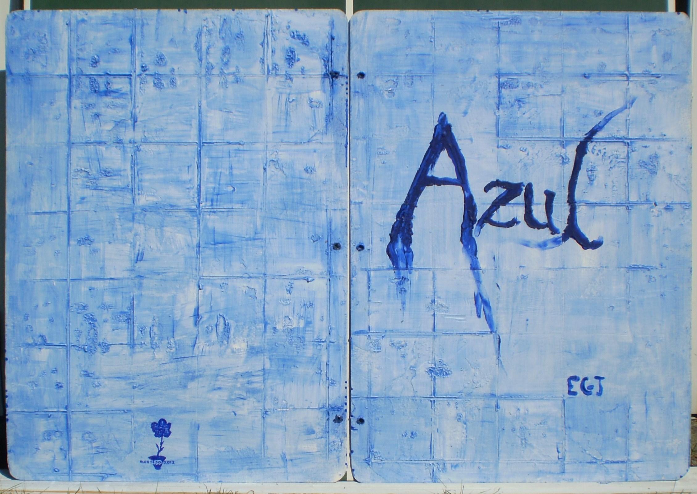 azul forside + 12.JPG