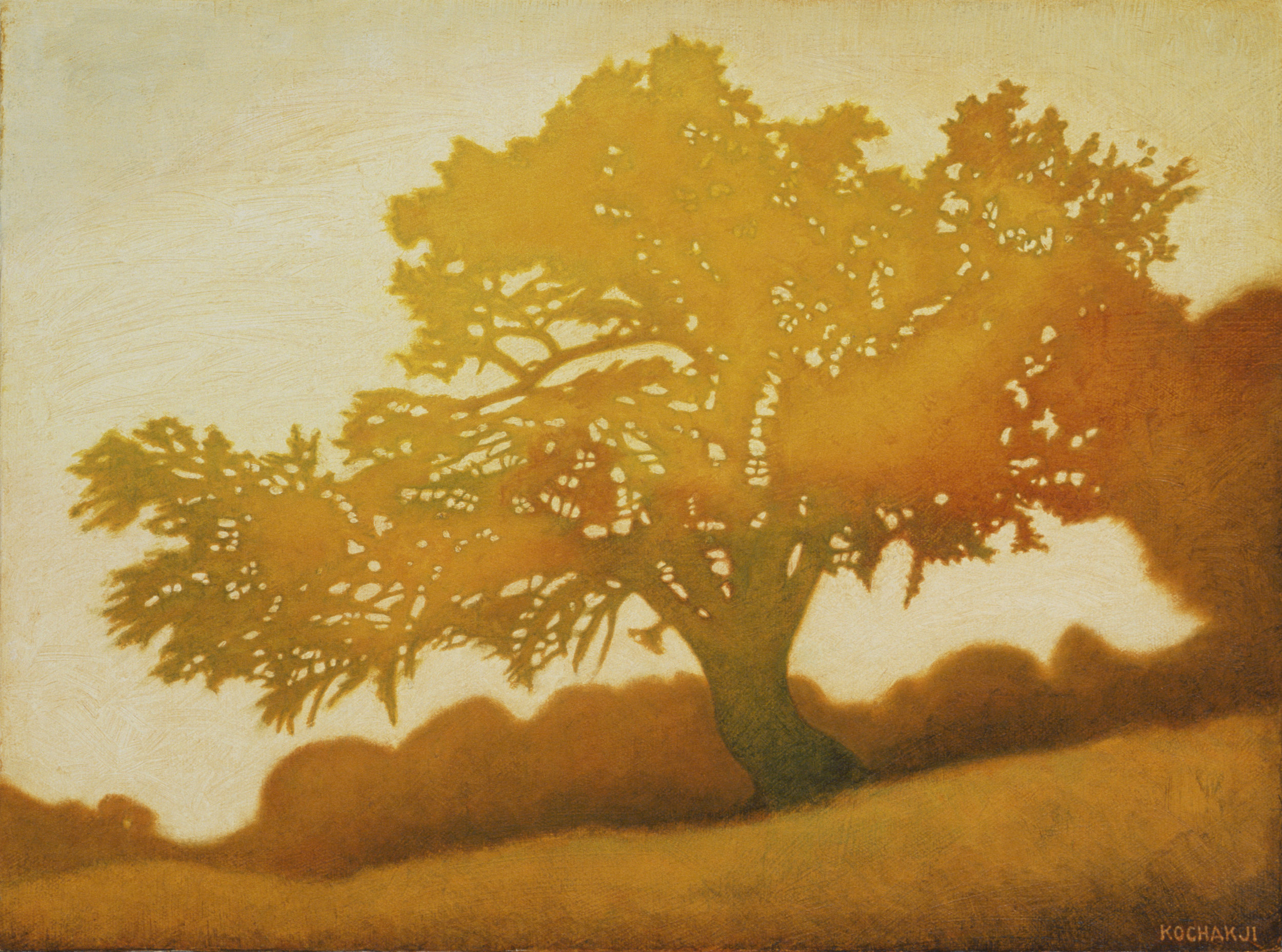 "The Golden Oak - oil on canvas - 16x12"""