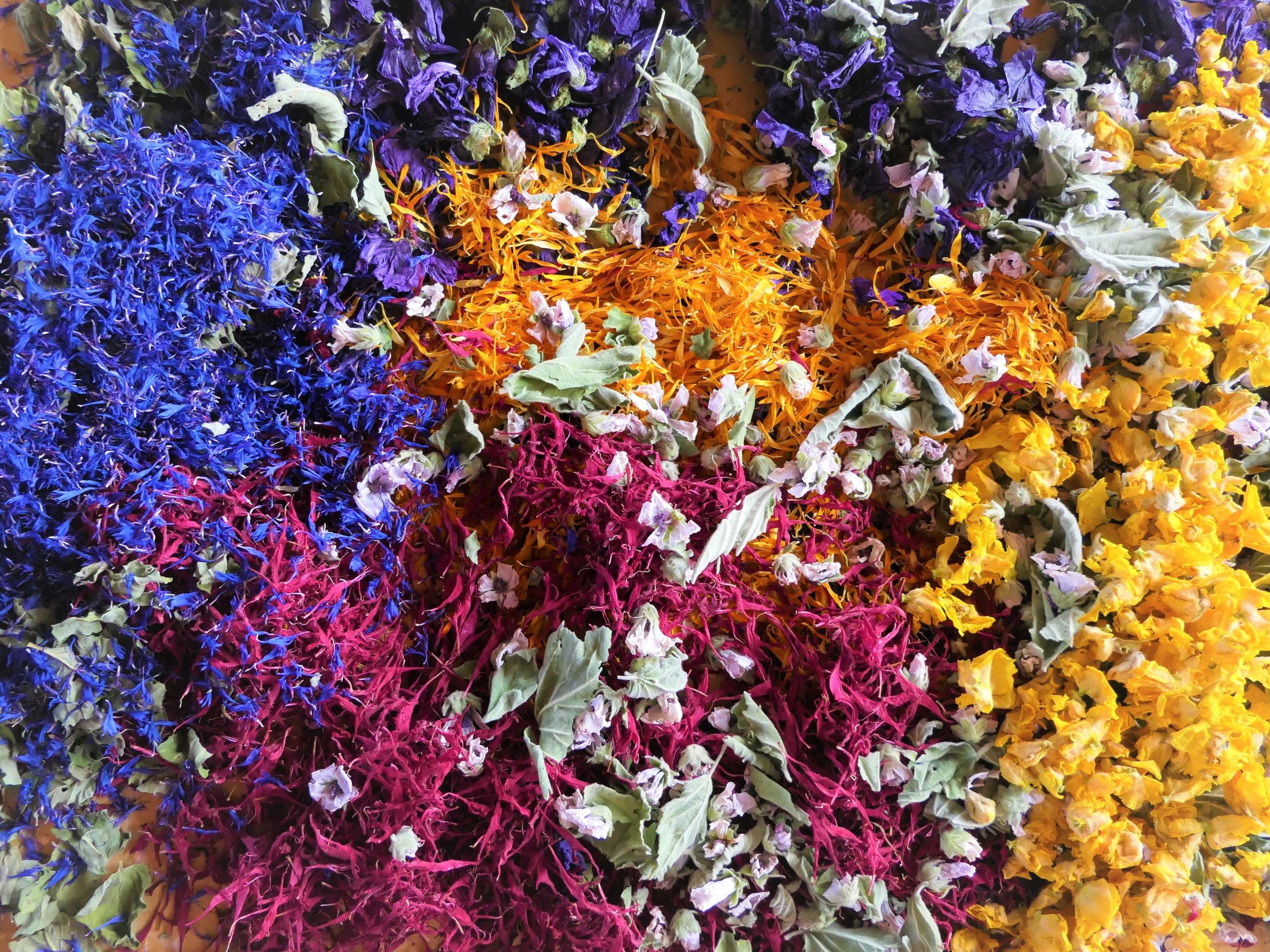 Kornblume, Goldmelisse, Ringelblume, Königskerze, Eibischblüten mit Blättern